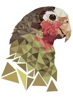 06 Geometric/Low Poly Design | Roosevelt Graphic Arts