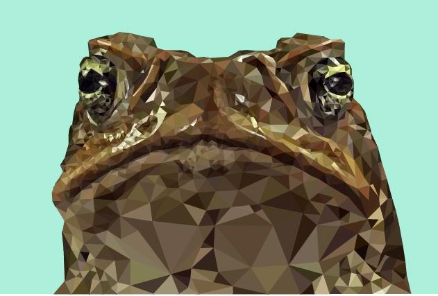 Geometric animal2345