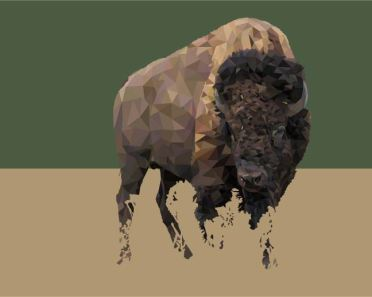 american-bison-art-1