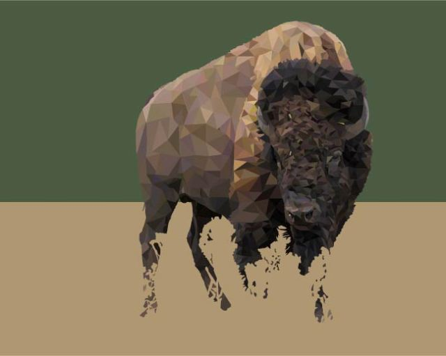 american-bison-art (1).jpg