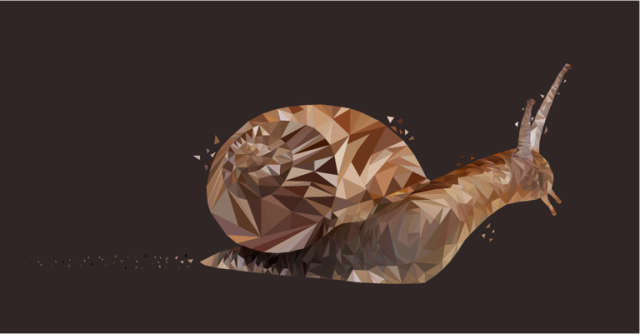 snail-geometric