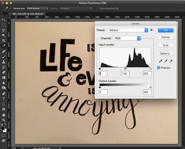 Levels dialog box will help you transform your photo into crisp black and white art in Photoshop