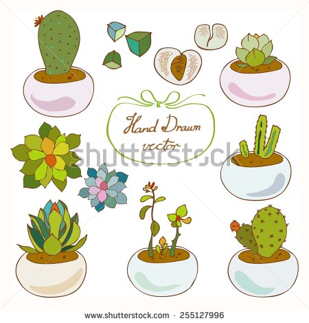 stock-vector-succulent-and-cactus-hand-drawn-vector-255127996