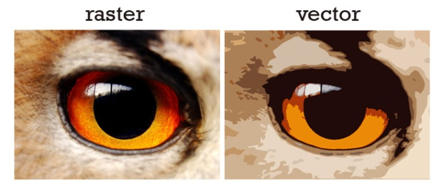 raster-vector-comparison